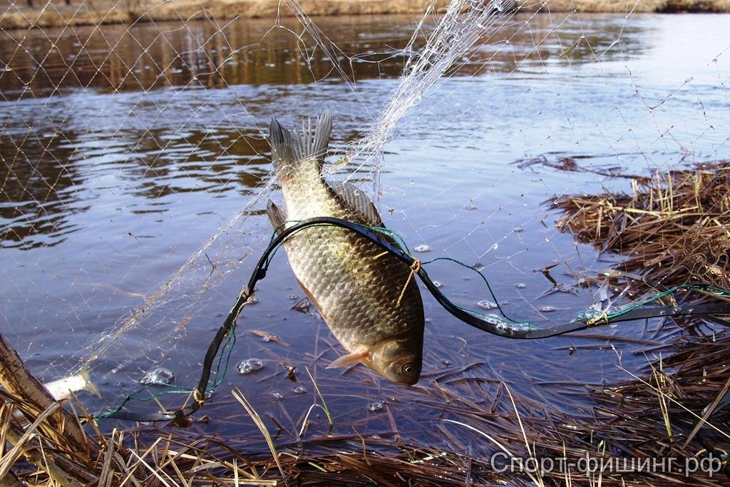 рыбалка рыб.ситями